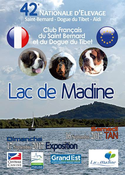 club de race dogue du tibet