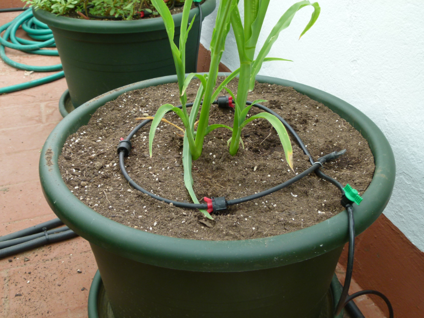 Detalle de colocación sobre la planta