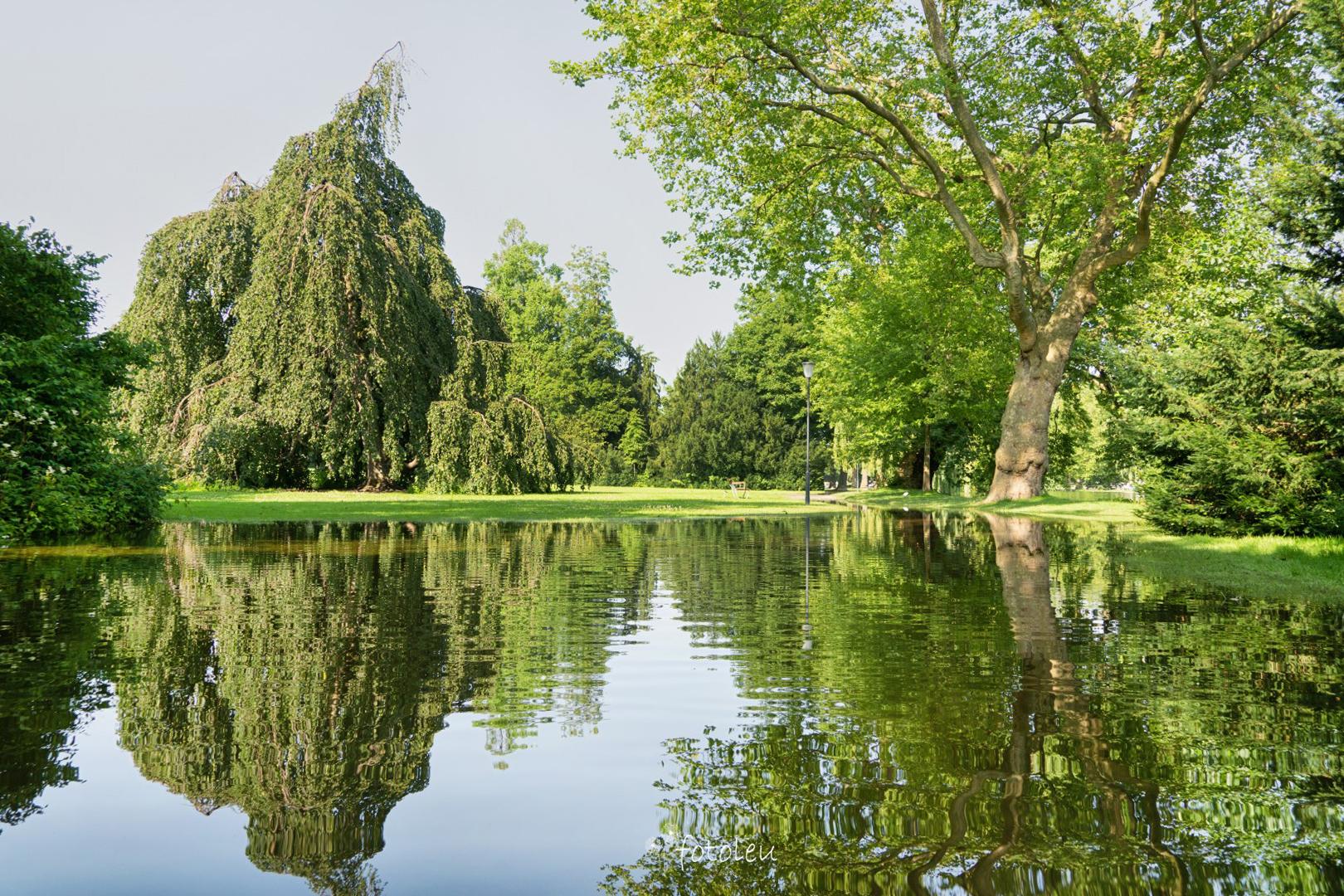 Hochwasser im Villettenpark