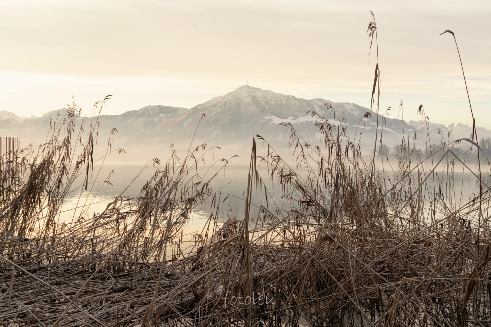 Wintermorgenstimmung