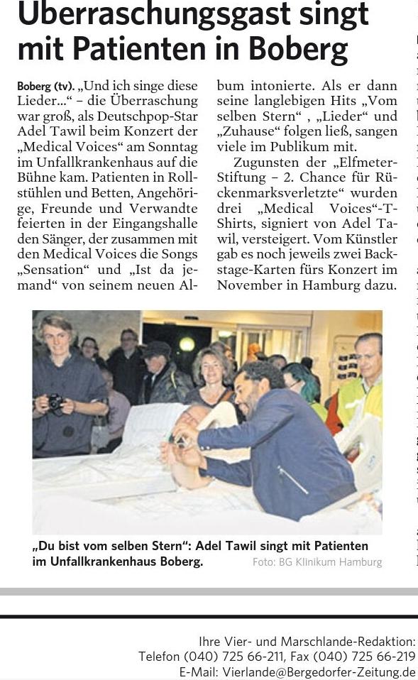 Text: Thomas Voigt Bergedorfer Zeitung 14.5.2017