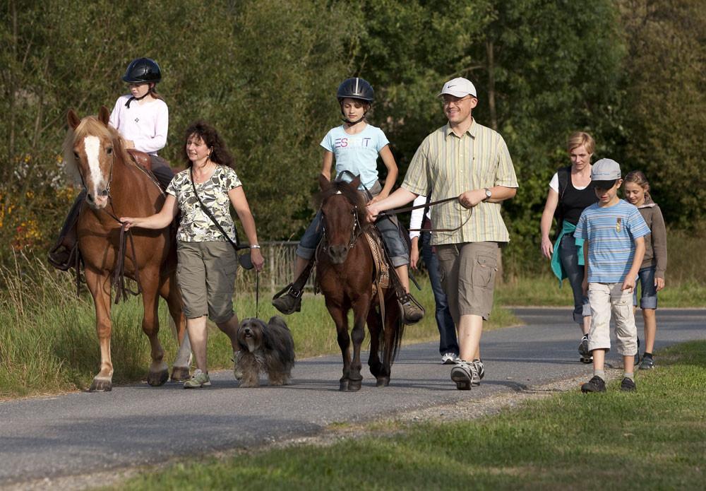Wöchentliches Highlight: Pferdenachtwanderung am Schneiderhof