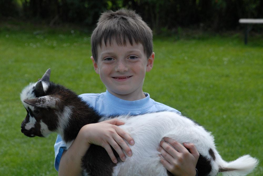 Vier lustige Ziegen freuen sich schon auf Euch