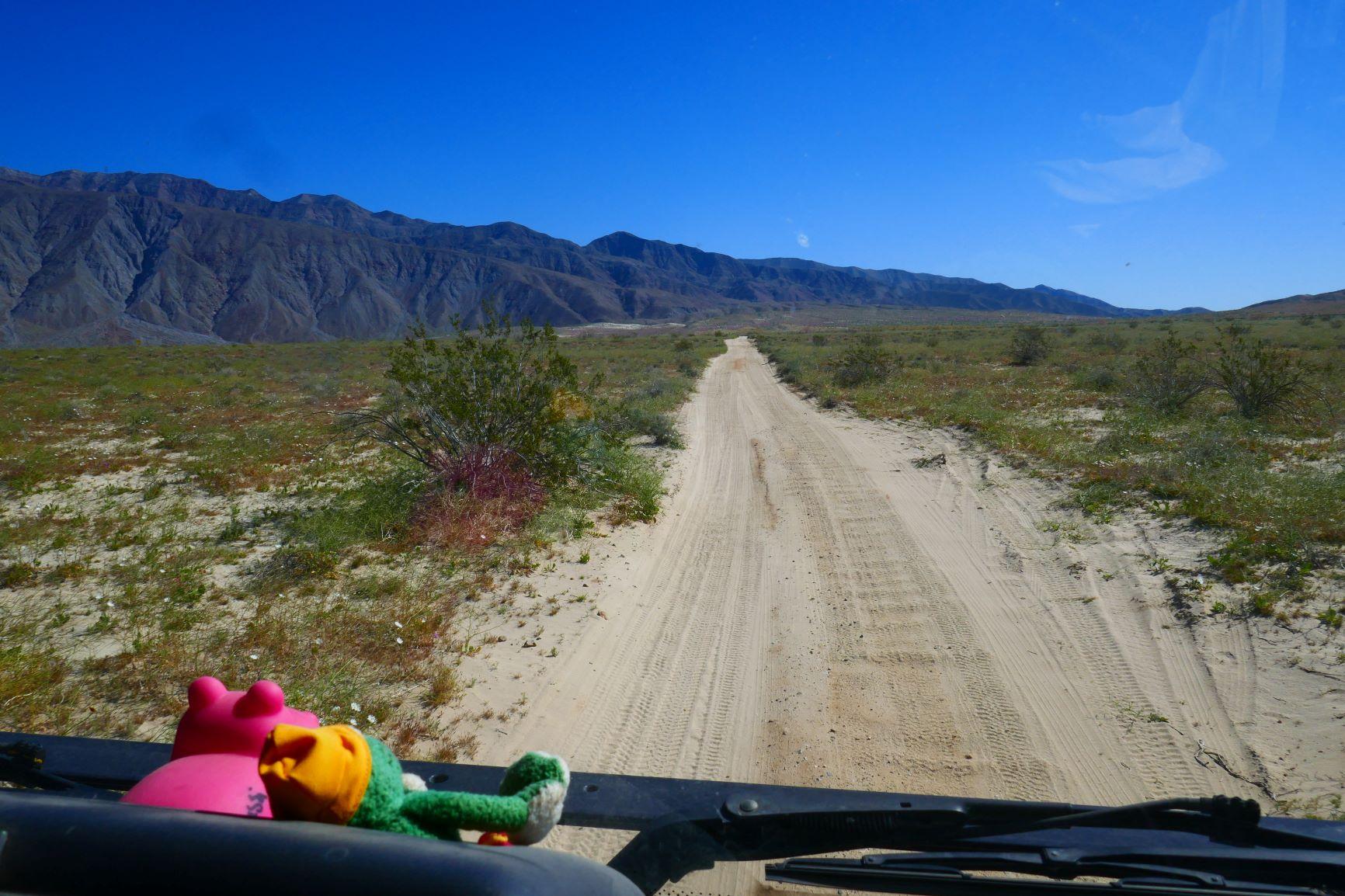 unterwegs im Anza Borrego Desert State Park