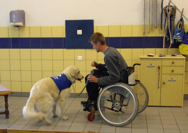 Ulrich(éducateur canin) et Chantilly présentent le rapport d'objet.