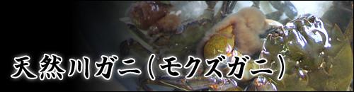 天然川ガニ(モクズガニ)