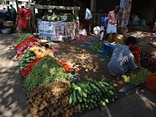 Gemüse-Früchte-Fischmarkt