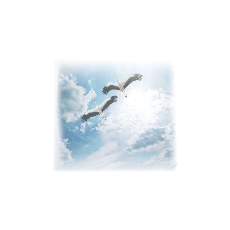 Артикул Freezone 22. Размер тюлевого полотна - шир.290 см выс.300 см; размер рисунка 155х140 см; состав - 100% полиэстер