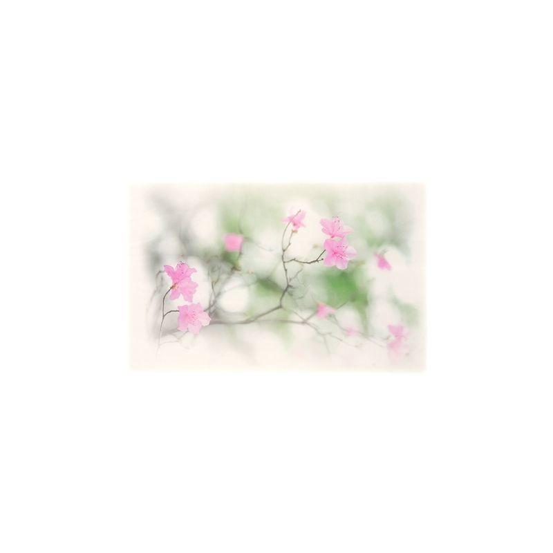 Арт.Freezone 10. Размер полотна ш290 в300 см; размер рисунка 150*100 см; состав - 100% полиэстер