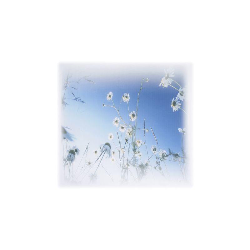 Арт.Freezone 6. Размер полотна ш290 в300 см; размер рисунка  140*140 см; состав - 100% полиэстер