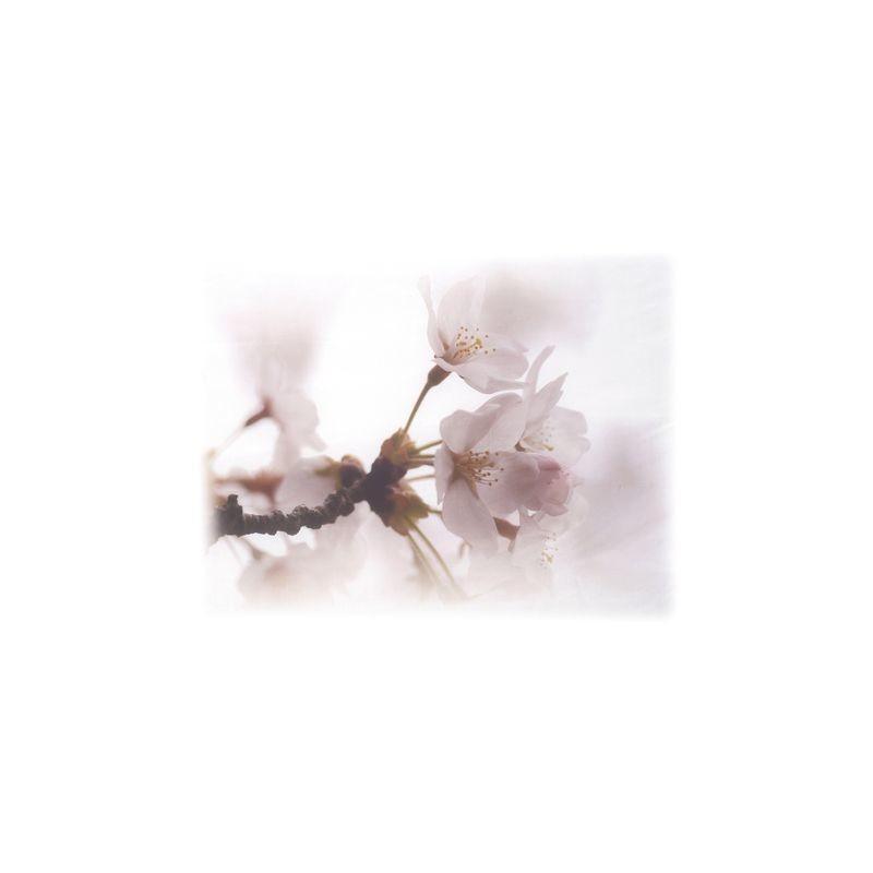 Артикул Freezone 15. Размер тюлевого полотна - шир.290 см выс.300 см; размер рисунка 155х140 см; состав - 100% полиэстер