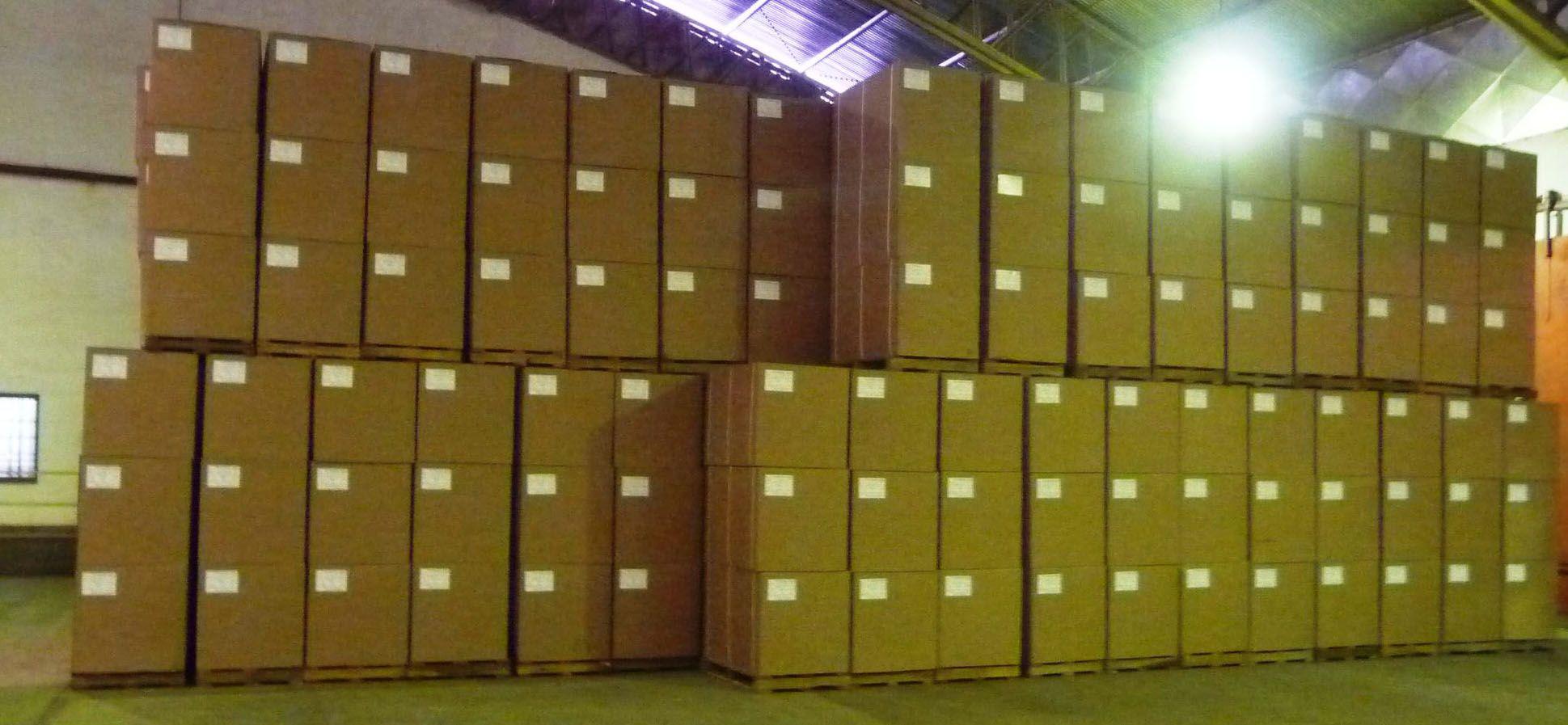 Cajas de hoja seca de Moringa Oleifera