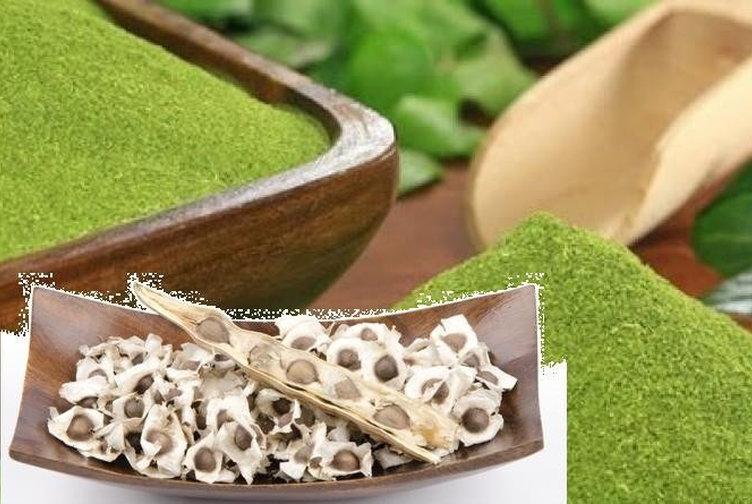 Semillas y polvo de moringa = 3,95 € (100 semillas)