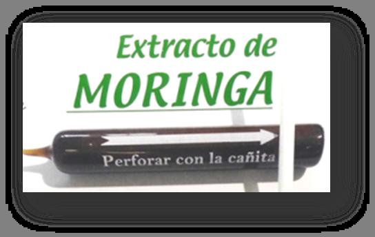 Extracto acuoso de moringa  (30 ampollas de 10 ml)