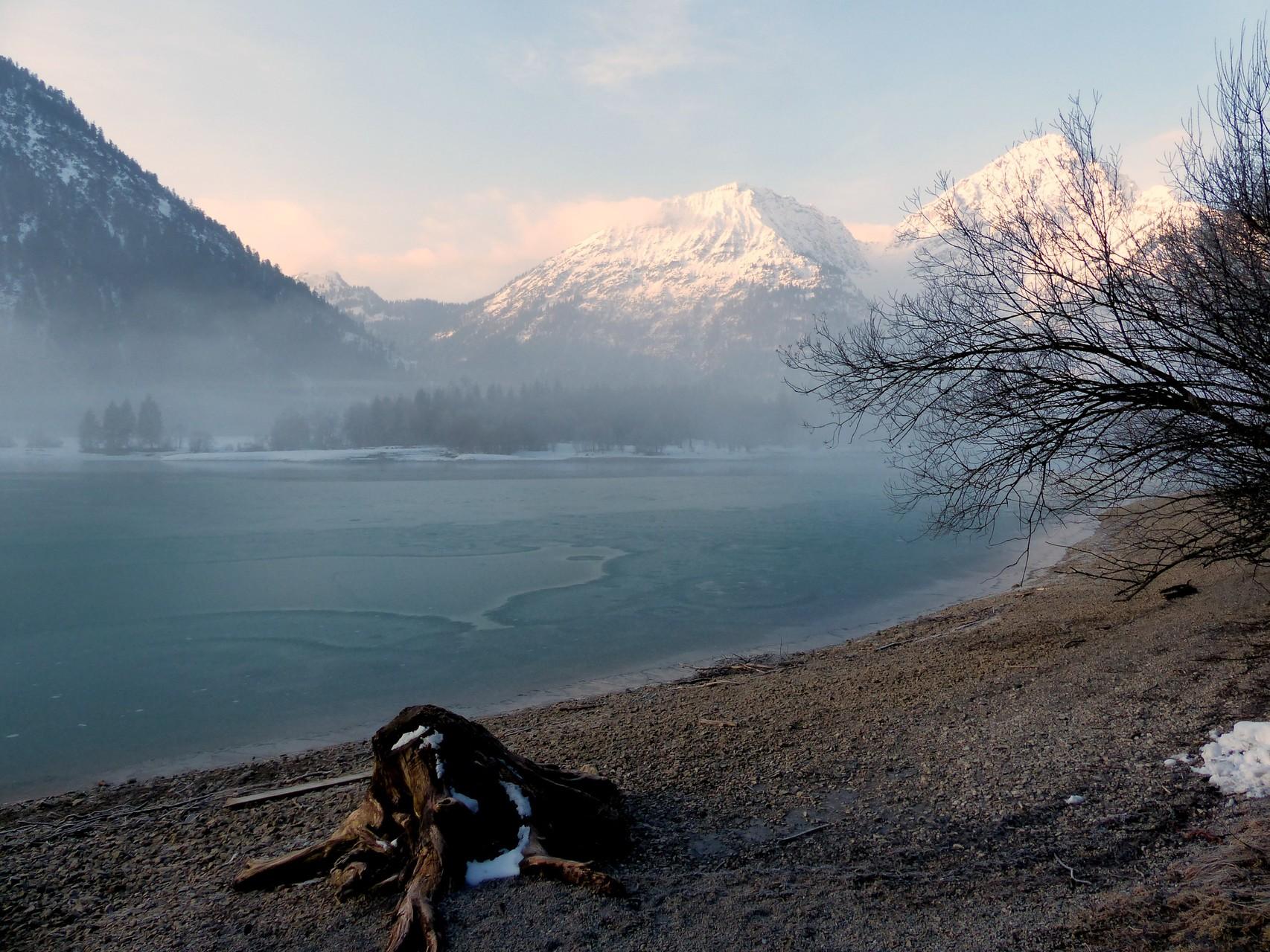 Eine große Wurzel, angespült an die Ufer des Heiterwanger See