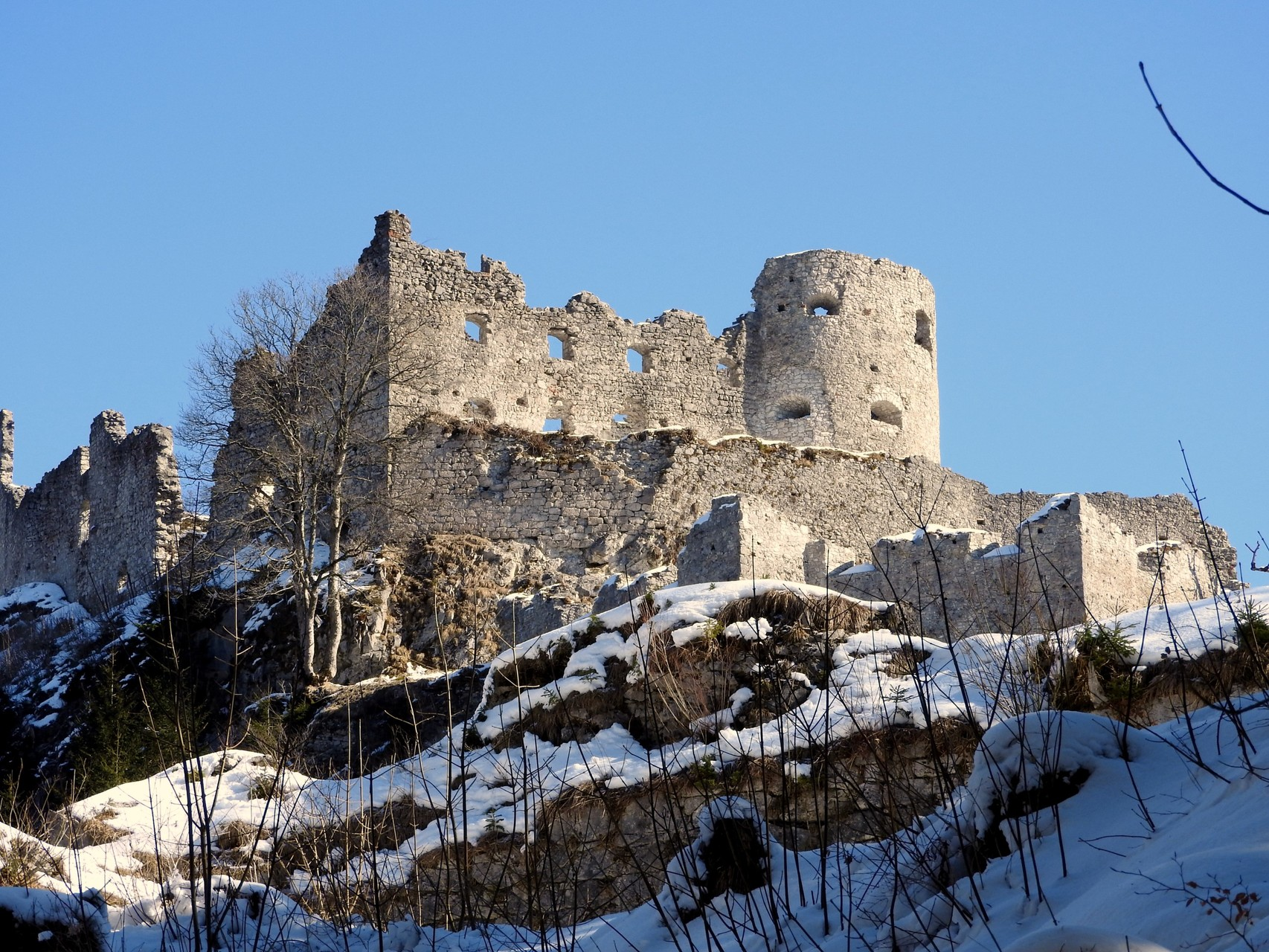 Blick auf die Ruine Ehrenberg