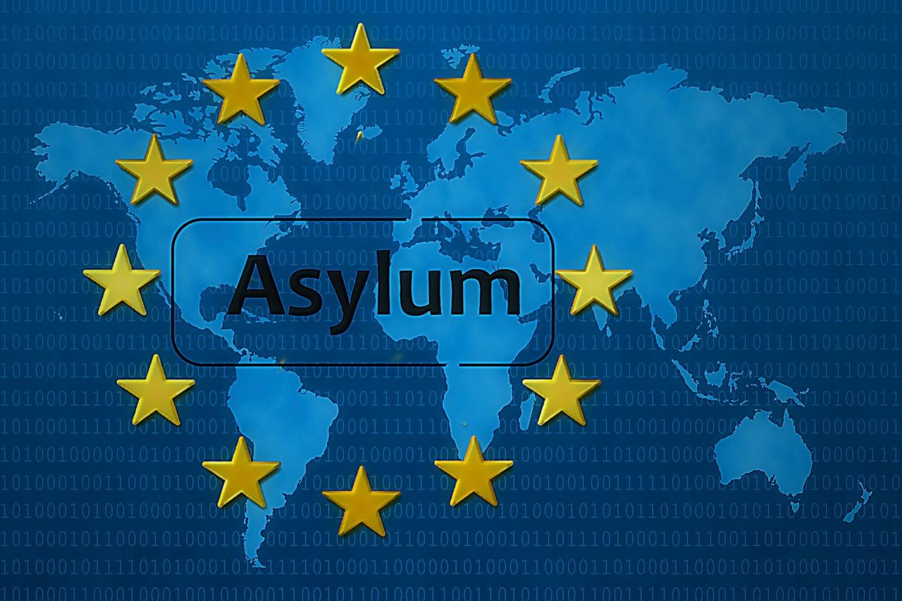 Últimas estadísticas de la migración: Impacto de la COVID-19