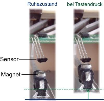 BlueLine Midi Sensor
