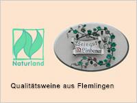 Weingut Lindemer in Flemlingen