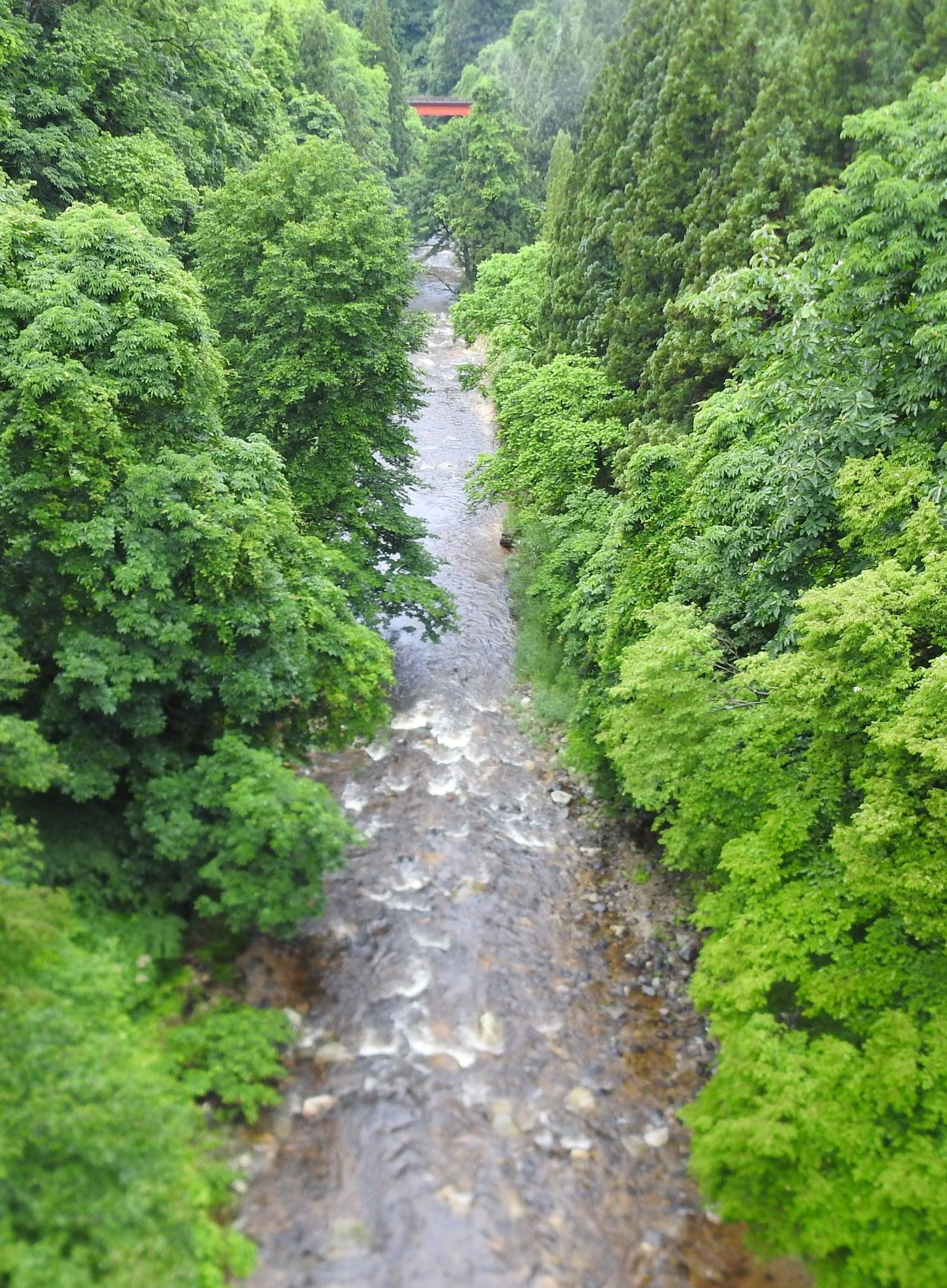 ☆柴倉川の流れ