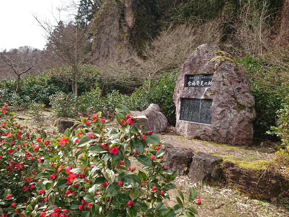 200330麒麟山いこいの森公園001