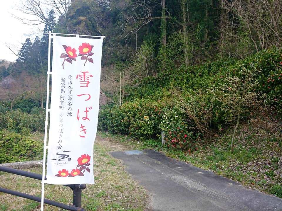 200417麒麟山いこいの森公園001
