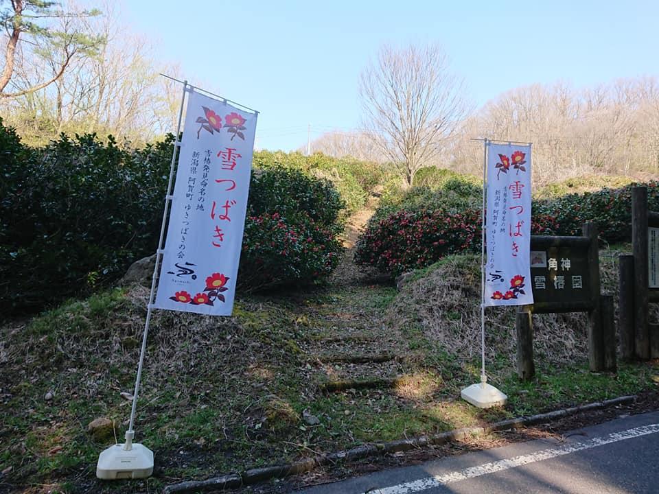 200412角神雪椿園001