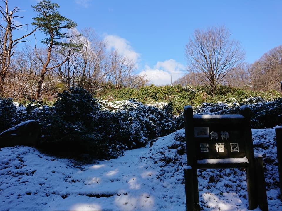 200324角神雪椿園001