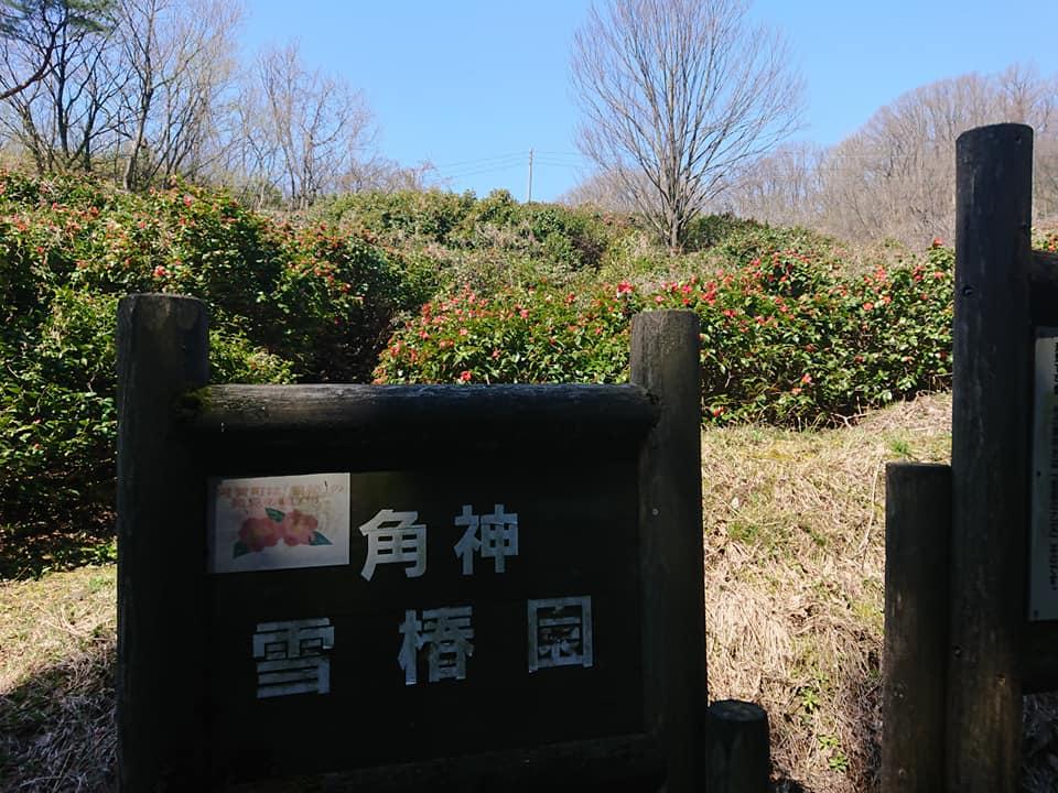 200403角神雪椿園001