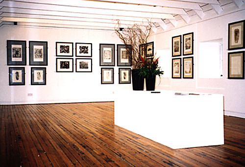 Roots of Spain, Bonhoga Gallery