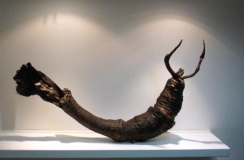 Metamorfósil, 2009, 72 x 130 x 20 cm
