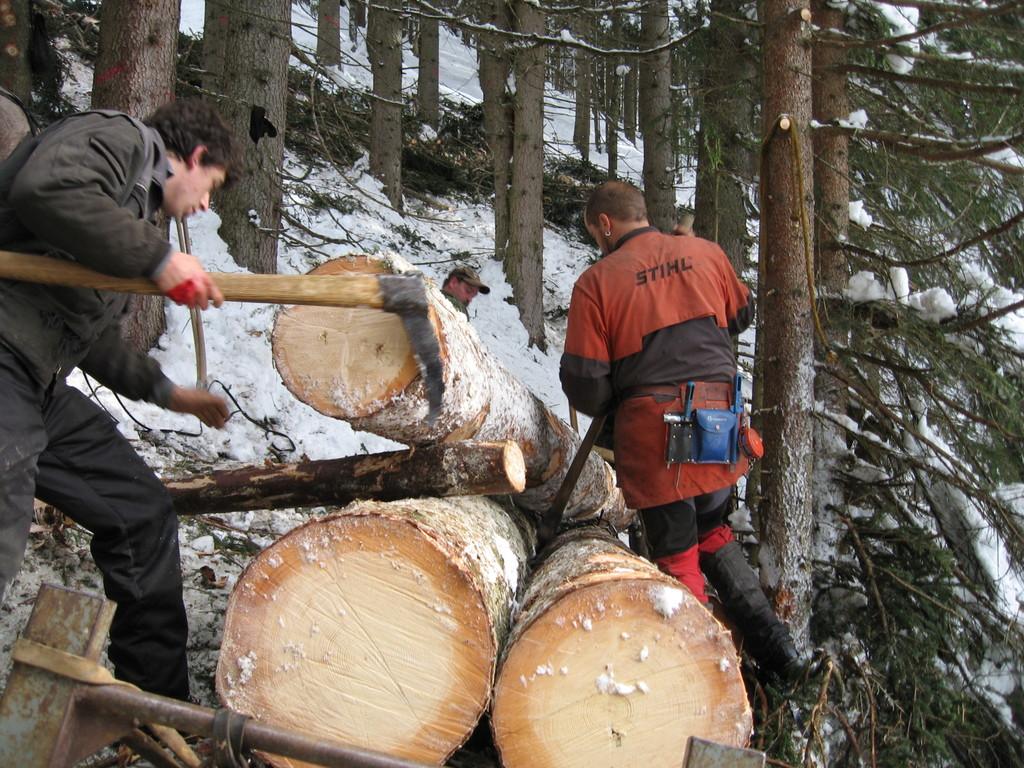 Vorbereiten der nächsten Holzfuhre