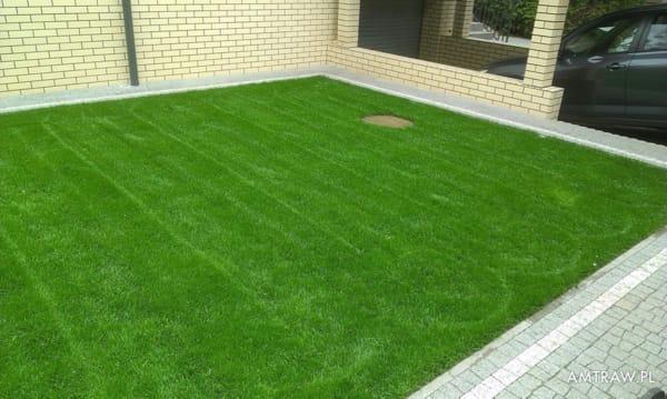 trawa z rolki, trawa z folii, trawa u klienta