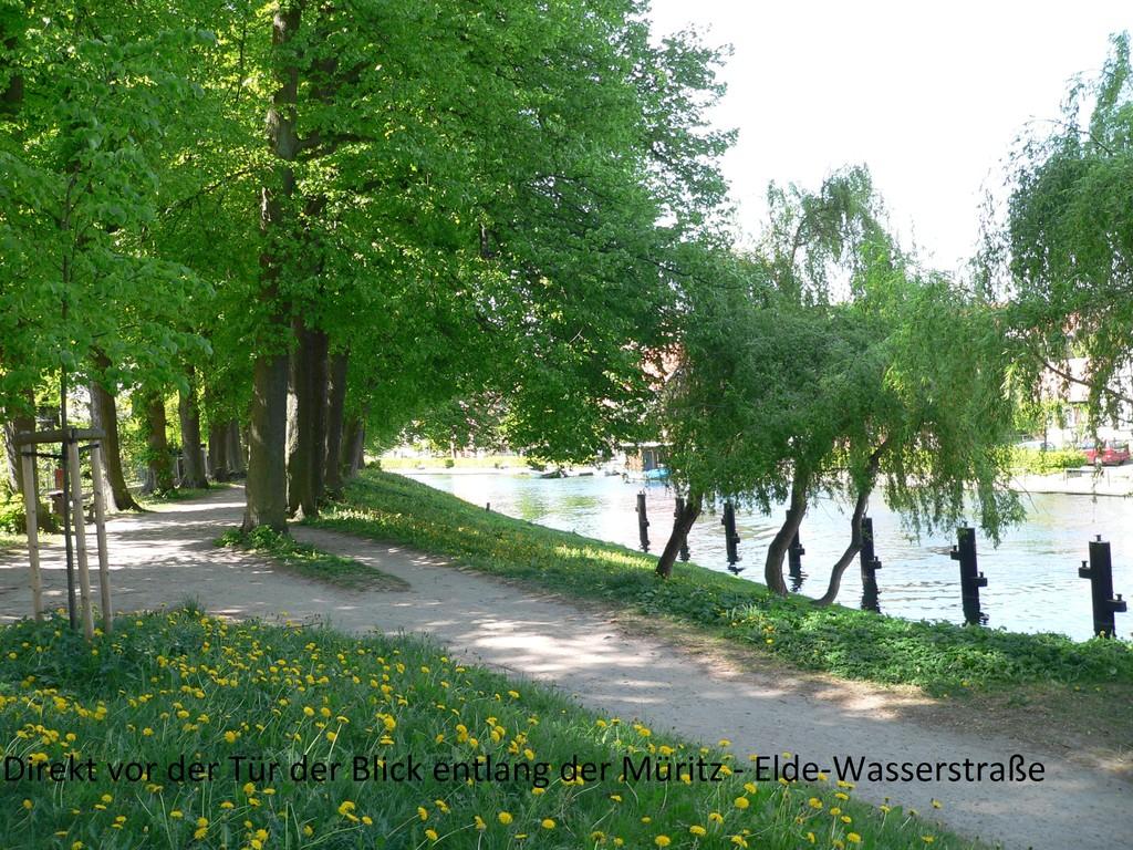 Blick direkt vor der Tür zur Müritz-Elde-Wasserstraße