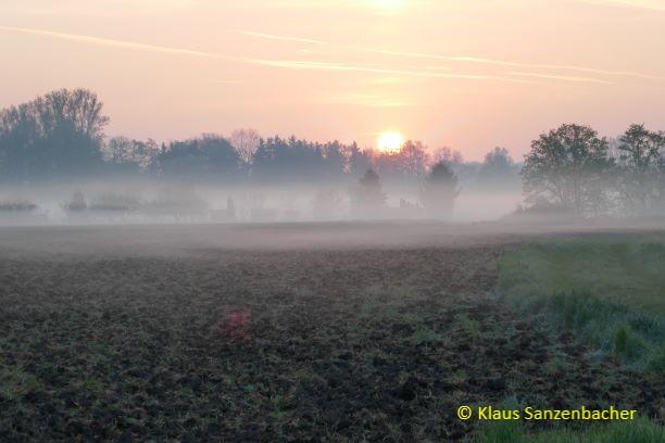 Bayerns Natur ist wunderschön und einzigartig. Morgenimpressionen von einer LBV-Exkursion
