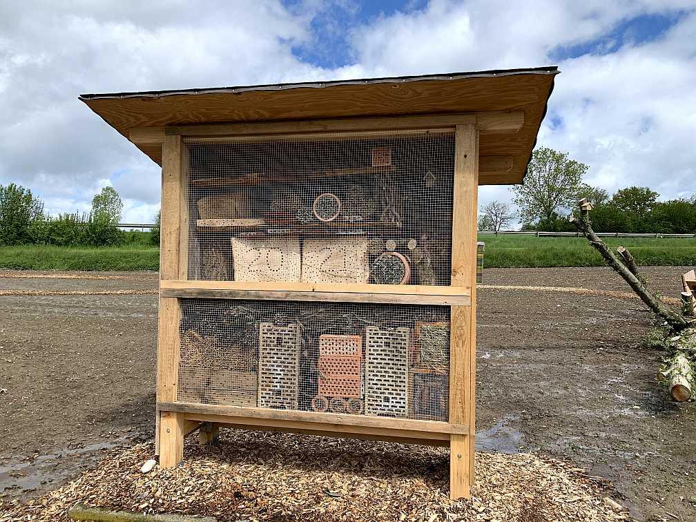 Insektenhotel steht