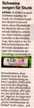 Stormarner Tageblatt 31.12.2010