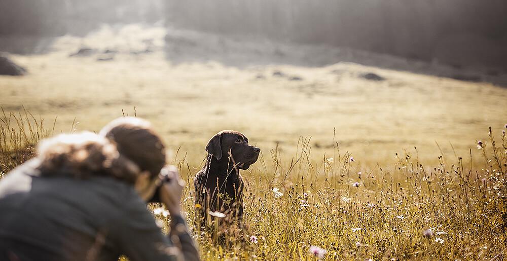 Halterin beim fotografieren Ihres Hundes im Gegenlicht auf einer Blumenwiese beim Fotocoaching von Monkeyjolie in der Ostschweiz