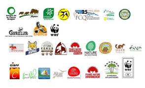 Petició d'accions a la Comissió Europea davant la mort d'óssos bruns a la població pirinenca