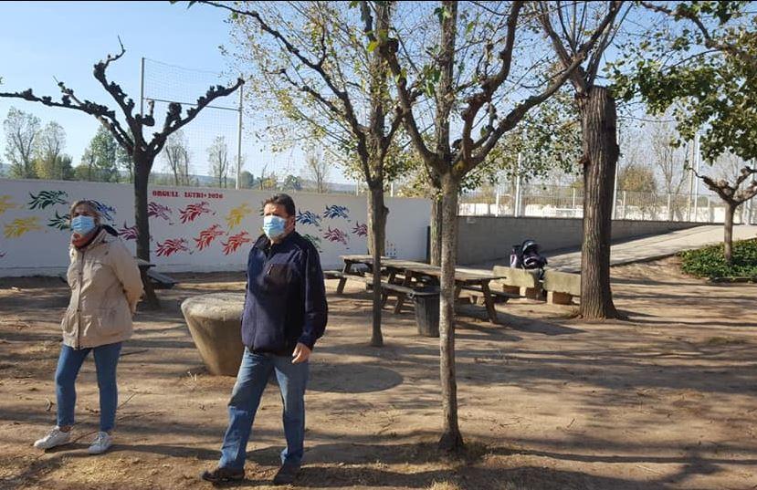 Neix una plataforma per mantenir 'viva' l'arbreda de Puigverd de Lleida