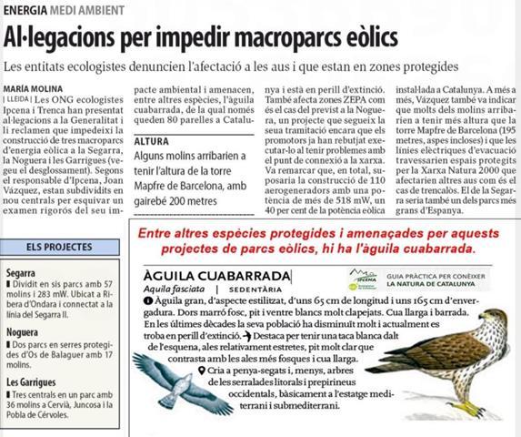 Al·legacions per impedir macroparcs eòlics per l'afectació a les aus