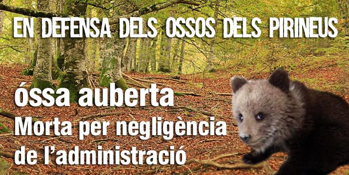 Denúncia presentada al Fiscal en Cap de l'Audiència de Lleida pel cas Aubèrta