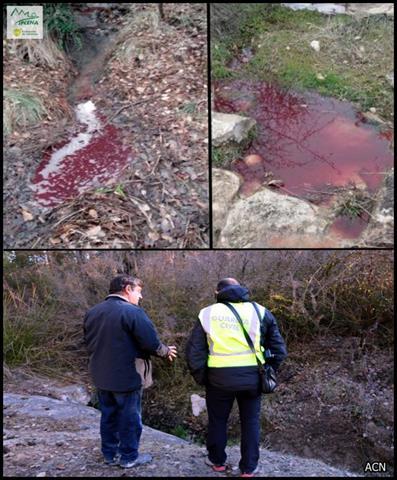 Gravíssim abocament d'aigües residuals amb sang d'animals sacrificats a l'antic escorxador de Navès al Solsonès