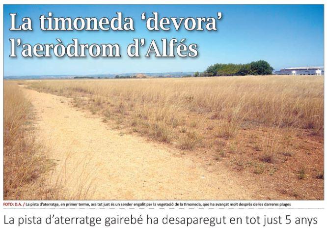 La timoneda 'devora' l'aeròdrom d'Alfés
