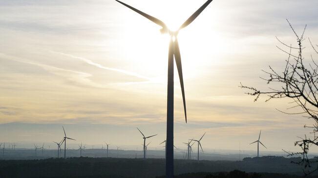 La Federació Ecologistes de Catalunya demanem la derogació del nou decret d'energies renovables