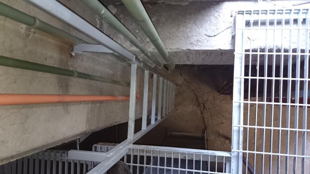 Construcci n de paso de gato o pasarela elevada en area de for Construccion de piletas paso a paso