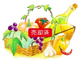 野菜と果物かごのイラスト(ぶどう・ハーブボトル・にんにく)