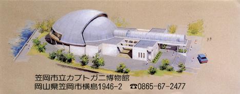 カブトガニ博物館、岡山笠岡、子育て、遊び