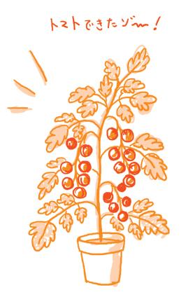 トマトイラスト、鉢植え