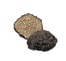 Eine spätreife Art des Sommertrüffels (Tuber aestivum) ist die Burgundertrüffel, auch Herbsttrüffel genannt. Sein Verbreitungsgebiet erstreckt sich von Europa bis ins nördliche Südskandinavien. Sie wächst in Symbiose mit Haseln, Linden, Föhren und Eichen